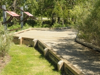 Walden Boardwalk 1